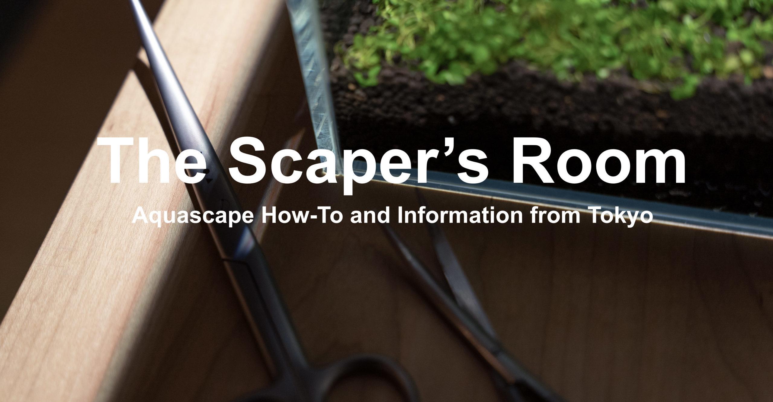 The Scaper's Room